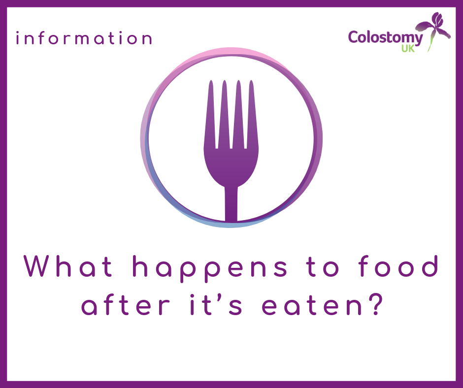 Colostomy UK: what happens to food